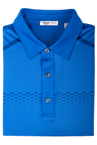 Graphic Placed Chest Stripe Polo (Regatta Blue)
